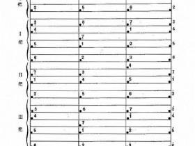 琵琶c调音位图表