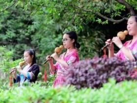 葫芦丝教程:学习葫芦丝所必备的习惯