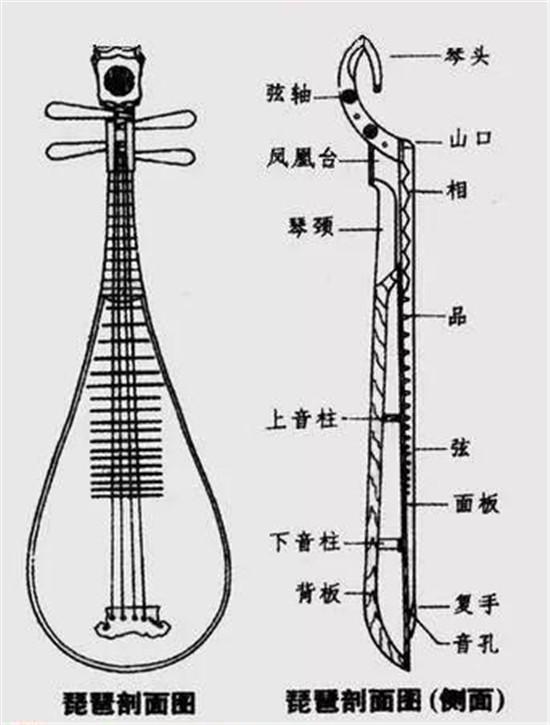 琵琶构造图文详解(琵琶新手入门必备)